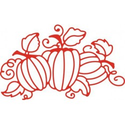 B139 / Cinderella's Pumpkin