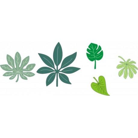 B119 / Tropical leaves
