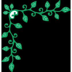 B315 / Ivy corner flourish