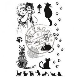 CS0914 / Sweet kitty