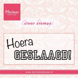 CS0933 / Hoera geslaagd clear stamp