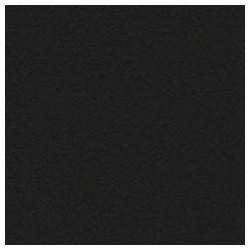 001 / papicolor raven zwart