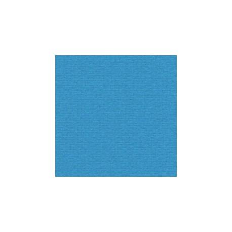 005 / papicolor korenblauw