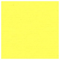 009 / papicolor citroengeel