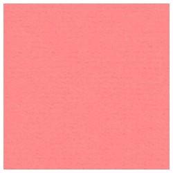 015 / papicolor roze