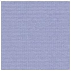 020 / papicolor violet