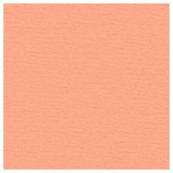 024 / papicolor abrikoos