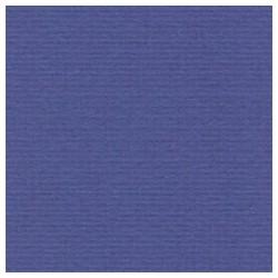 031 / papicolor irisblauw
