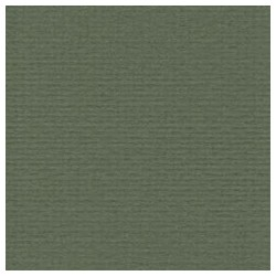 045 / papicolor olijfgroen