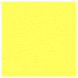 009 / papicolor citroengeel dun