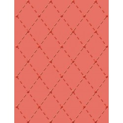 CR900-018 / in Stitches Embossing Folder