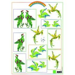 IT556 / Knipvel Birds Green
