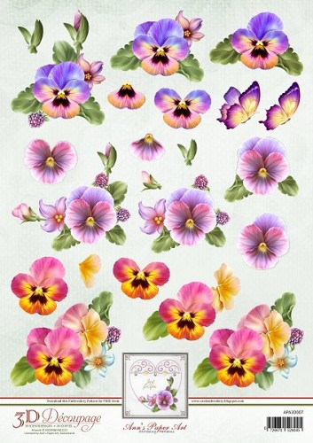 APA3D007 colourful pansies